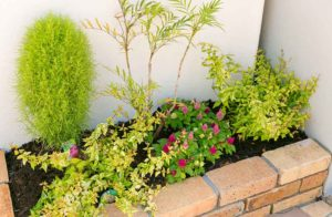 植栽の緑が白色に映えてより鮮やかに