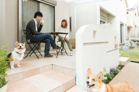 愛犬とお庭で寛ぐ夫婦